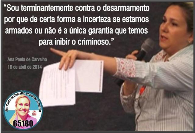 desarmamento1